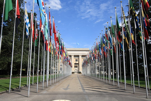 Cờ trong United Nations
