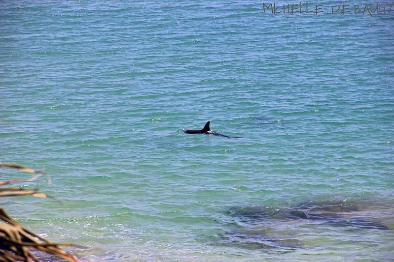9 September 2012- beach016
