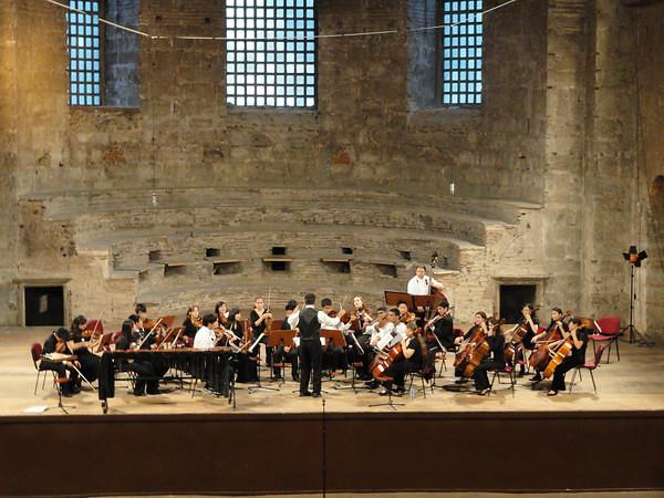 Palo Alto Chamber Orchestra 2010 Tour of Turkey