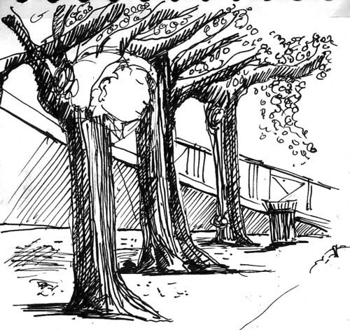 Sieste arboricole by Stéphane Feray