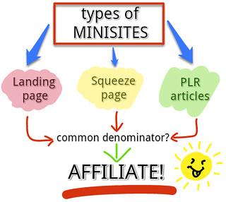 Types of minisites (diagram)