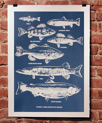 Fresh Water Fish Chart - Dark Blue