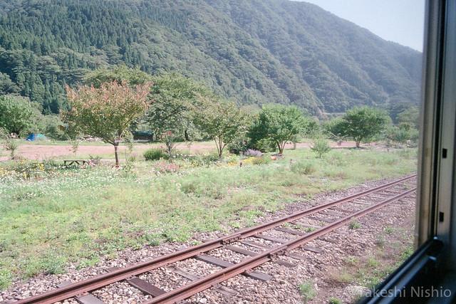 勝原駅のお花畑 / Fields of Flowers at Kadohara Sta.