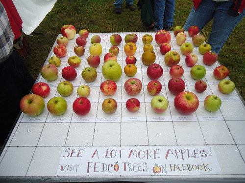Maine apple varieties
