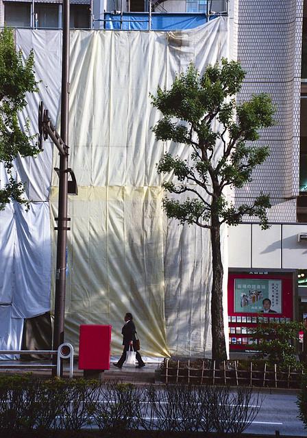 神保町 街路樹 Chiyoda-ku, Tokyo