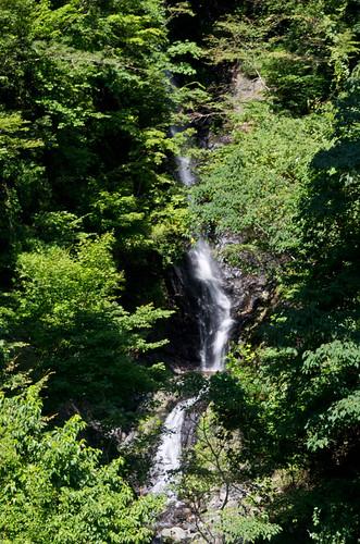 大樽(大樽沢の滝) 2012.9.29-4