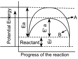 Catalyst increases the reaction rate by lowering the activation energy of the reactant.