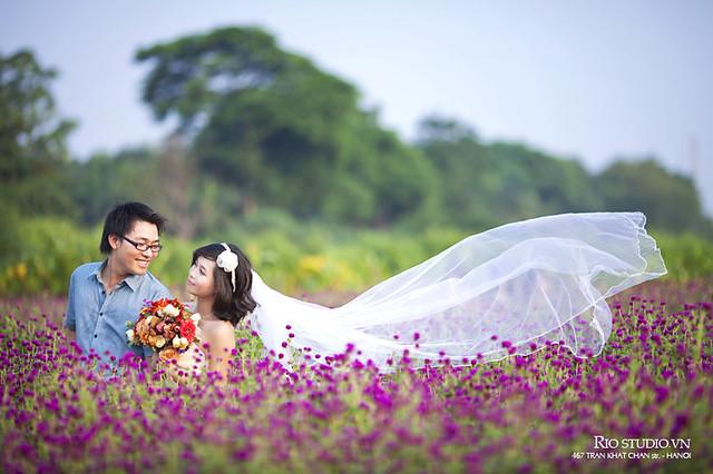 Ảnh cưới Đạt - Nguyệt (Hà Nội)