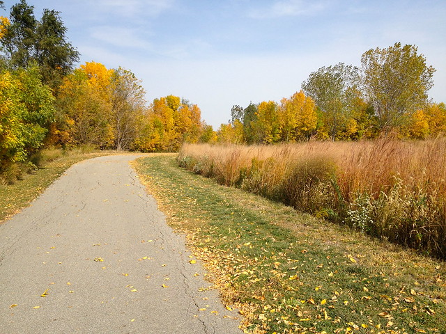 Fall at the lake side trail
