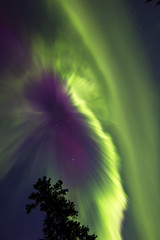 [Free Images] Nature, Aurora, Night Sky, Green Color ID:201210072000
