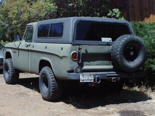 Burt rear