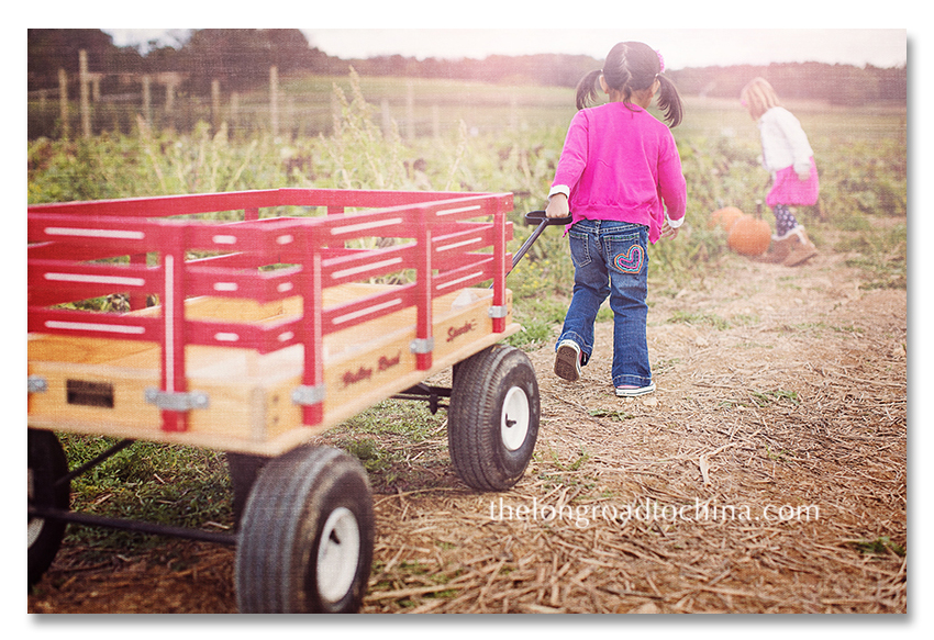 Pulling the wagon to her sister BLOG