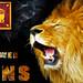 Sri Lanka Lions
