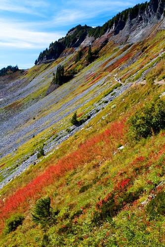 Autumn on Chain Lakes Trail