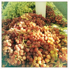 Bushels of Grapes