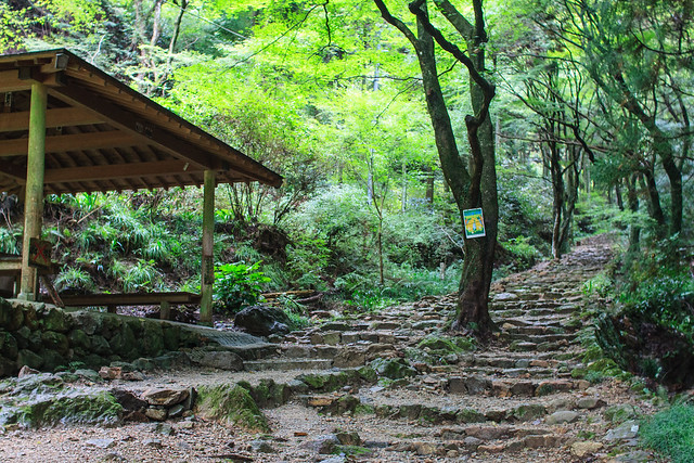 20121001-Sefukuji-5