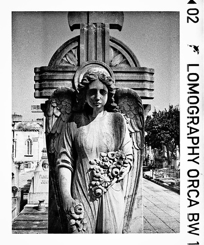 Provincial Cementery 2012 #2 by Jaume Salvà i Lara