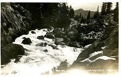 [IDAHO-B-0132] Lake Fork Creek - McCall