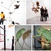 Frieze birds and Home Office chameleon