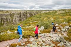 Parque nacional de Fulufjället