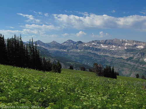 View from the Face Trail, Jedediah Smith Wilderness Area, Caribou-Targhee National Forest, Wyoming