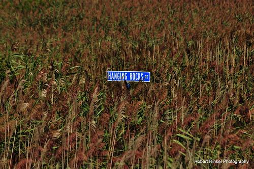 What Road? by robert.rinkel via I {heart} Rhody