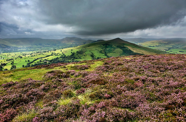 The view over the ridge including Mam Tor and Lose Hill. A photo with purple heather in the foreground and storm clouds.