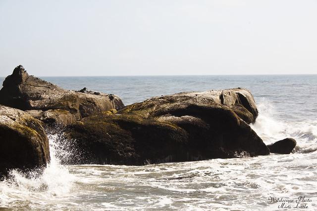 onp_beach2