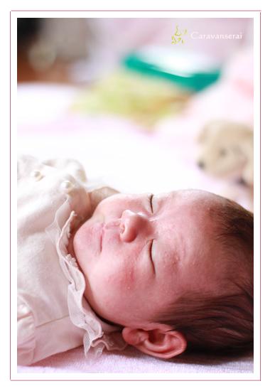 ベビーフォト 赤ちゃん写真 家族写真 瀬戸市