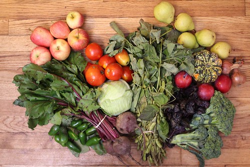 2012 Stone Ledge Farm Share (Week 14)