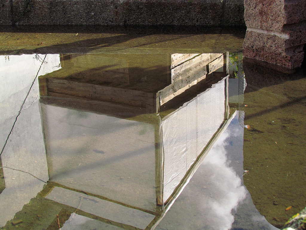 Sistema aquaponico