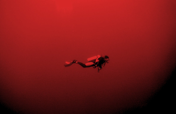 "Diving in ""The Red"""