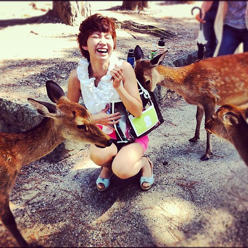 Young woman attacked by cute friendly deer of Nara.