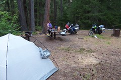 at the Threehorn campground, Umpqua National Forest