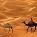 ترحال ..! by KHALID ALSABT   خالد السبت  
