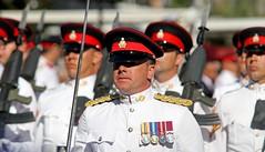 A Royal Parade 338