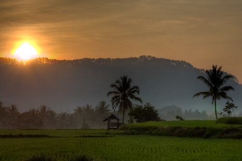 The Landscape of an Area in West Sumatra