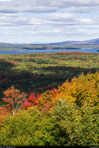 autumn trees lake fall me water colors forest woods maine foliage rangeley dmcg10