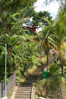Obraz Gunung Kawi. trees bali green indonesia temple steps jungle lush gunung hindu kawi