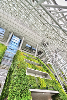 Seoul 2016: City Hall Interior And Green Wall