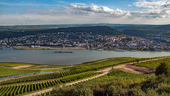 Mittelrheintal / Middle Rhine 2010