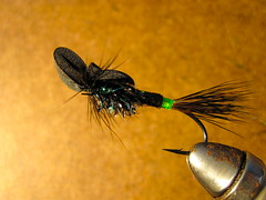 foam top skater steelhead pattern