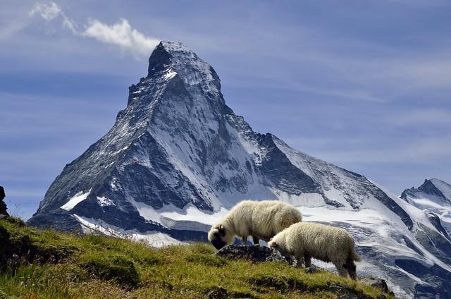 Matterhorn from Höhbalmen