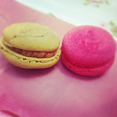 There's a macaron seller at the market now! Yum!
