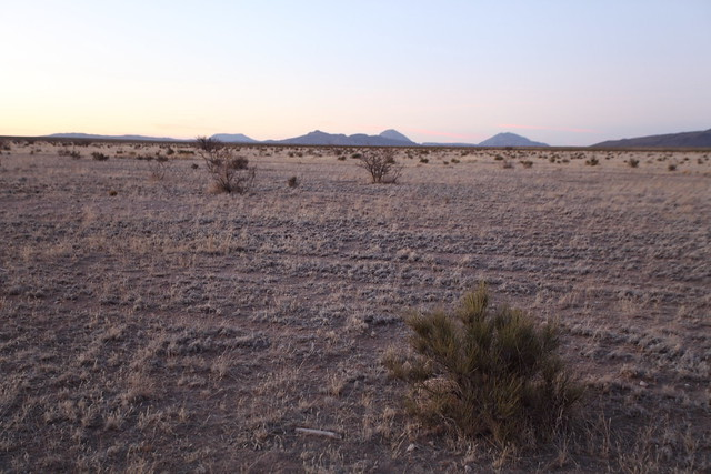 Chihuahuan Desert in West Texas