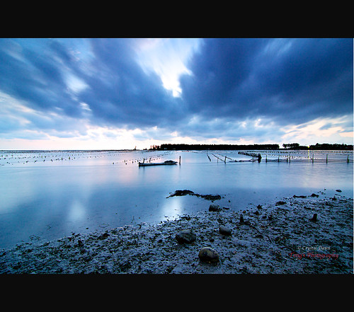 Bluish by © Crystal Dawn Photography