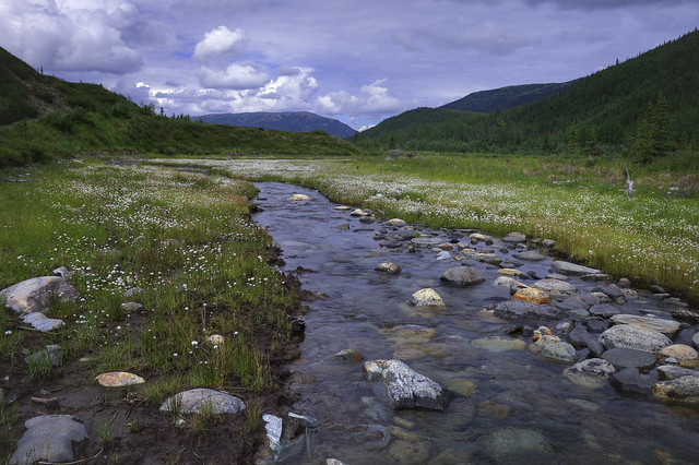 Angle Finder App >> Moose Creek | NPS / Jacob W. Frank | By: DenaliNPS | Flickr - Photo Sharing!