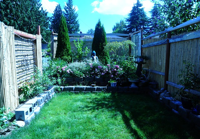 A garden for the Buddha in progress green grass fence