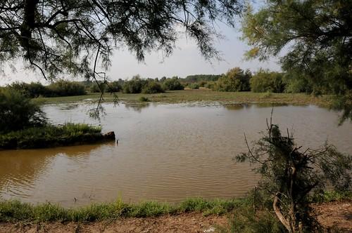 Marais de la Cantonade