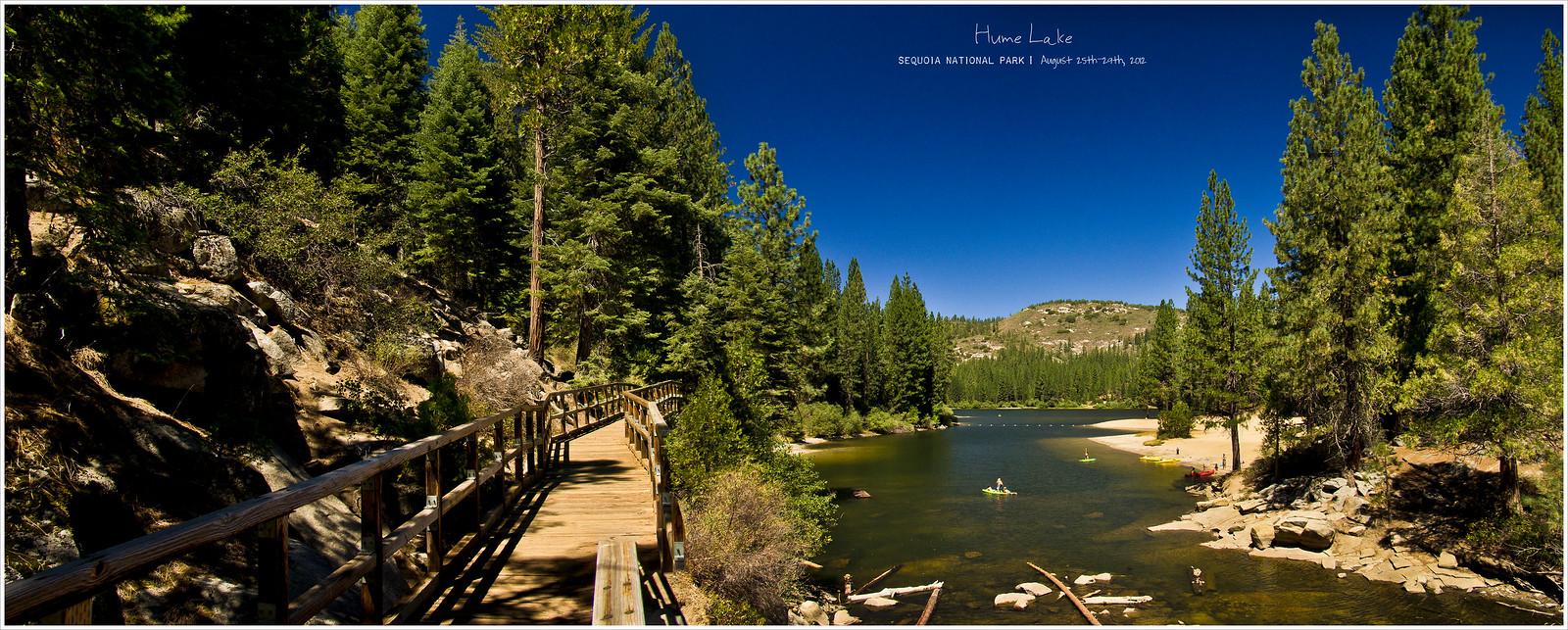 和千年大树的约会 - 紅杉樹國家公園